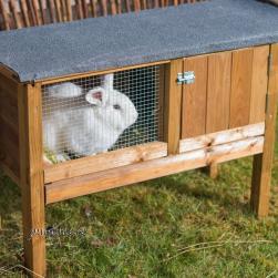 Küülikupuur Rabbit 1