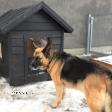 Dog house JACKY 2 black 3.png