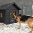 Dog house JACKY 2 black.png